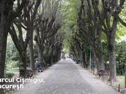 Parcul-Cişmigiu-Bucureşti